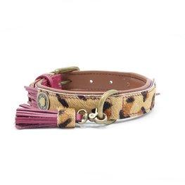 Dog With A Mission Halsband Lou Lou 4 cm XL