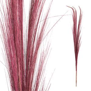PTMD Droogbloemen Pink Bamboo S